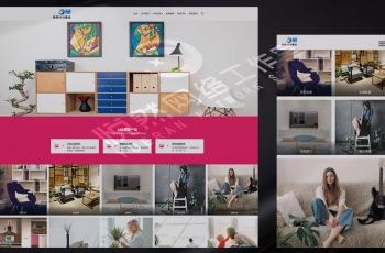 zingpro-004网站模板